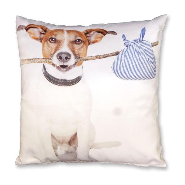 Polštář Doggy no. 3, 45x45 cm