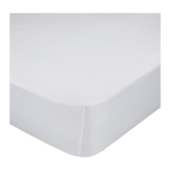 Bílé bavlněné elastické prostěradlo Happy Friday Basic, 70x140cm