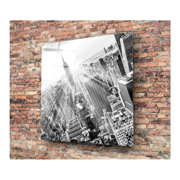 Skleněný obraz Insigne Pantego, 30x30cm