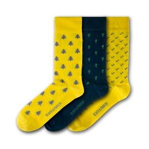 Sada 3 ponožek Black&Parker London St Michael's Mount, velikost 37 – 43