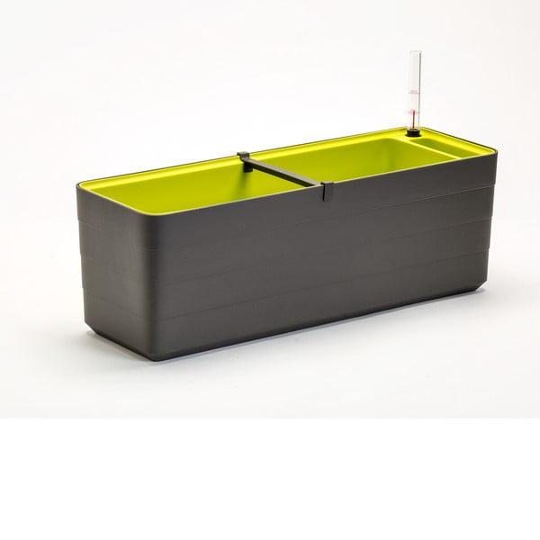 Antracitovo-zelený samozavlažovací truhlík Plastia Berberis , délka59 cm