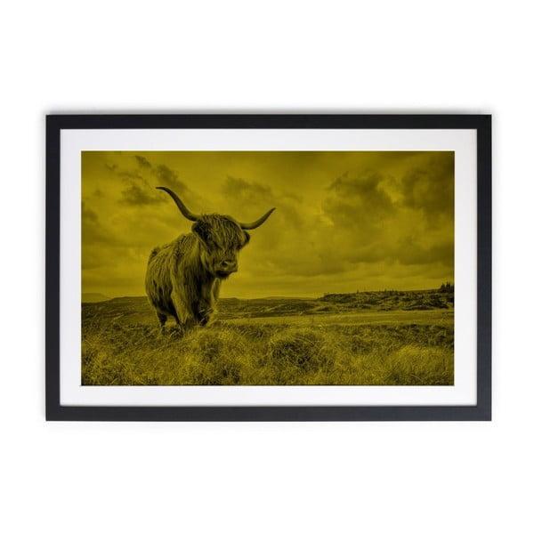 Tablou Really Nice Things Buffalo, 40 x 60 cm