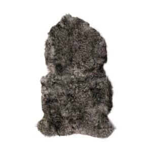 Šedá ovčí kožešina s krátkým chlupem Arctic Fur Lina, 90x60cm