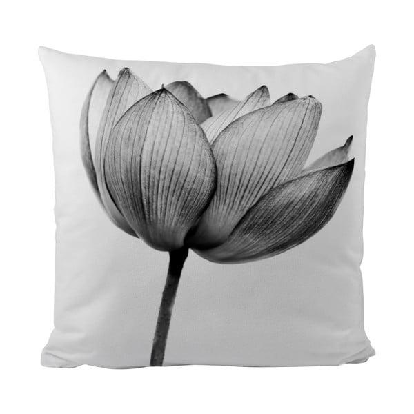 Polštářek Black Shake Tulip, 50x50 cm