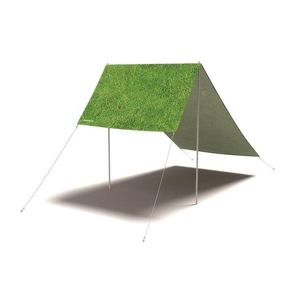 Celta Grass is Always Greener