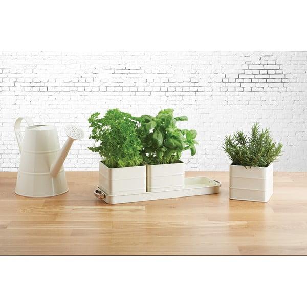 Sada 3 krémových květináčů na bylinky Kitchen Craft Living Nostalgia