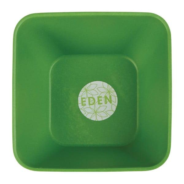 Zelená bambusová miska Premier Housewares Eden