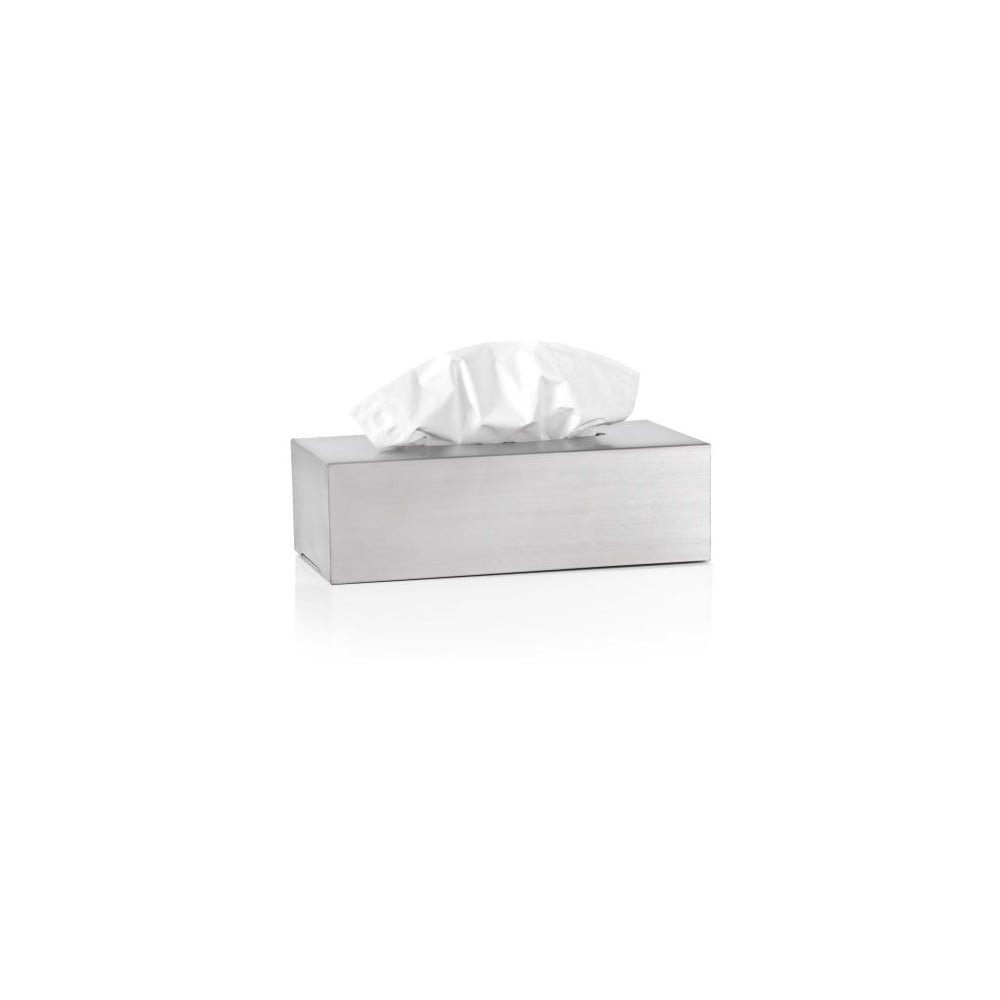 Matný nerezový box na kapesníčky Blomus Areo