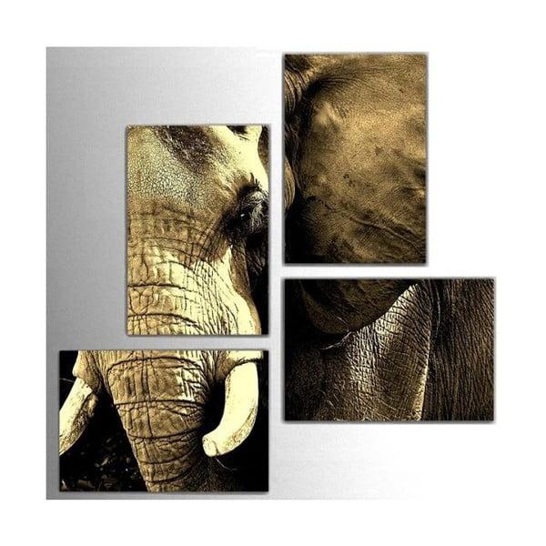4dílný obraz Elephant, 76x76 cm