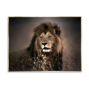 Tablou imprimat pe pânză Styler Golden Lion, 62 x 82 cm