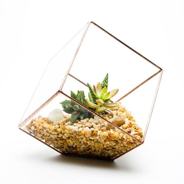 Terárium s rostlinami Urban Botanist Cube Terrarium, světlý rám