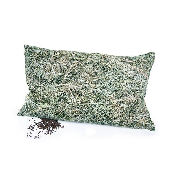 Széna pamutkeverék díszpárna hajdina töltettel, 50 x 30 cm - Foonka