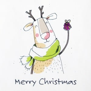Balení 10 papírových ubrousků s vánočním motivem PPD Santa Reindeer