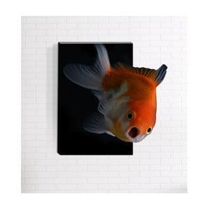 Nástěnný 3D obraz Mosticx Nemo, 40 x 60 cm