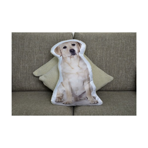 Polštářek Adorable Cushions Zlatý labrador