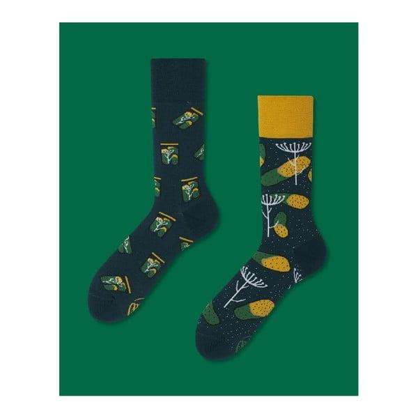 Ponožky Many Mornings Pickles, vel. 35/38