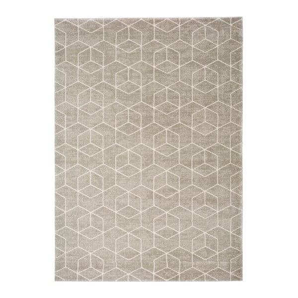 Hnědý koberec Universal Opus, 200 x 290 cm