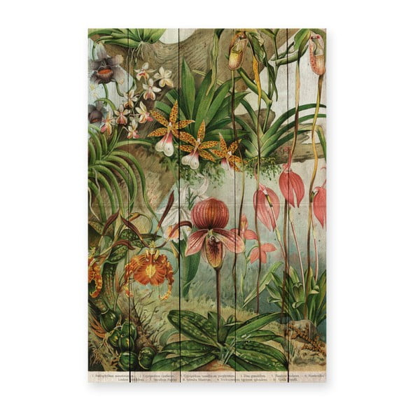 Decorațiune din lemn de pin pentru perete Madre Selva Jungle Flowers, 60 x 40 cm