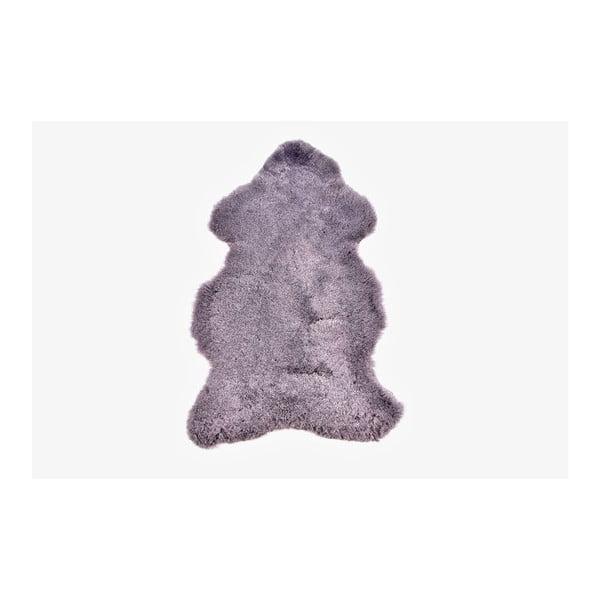 Ovčí kožešina s krátkým chlupem Grey, 100x60 cm