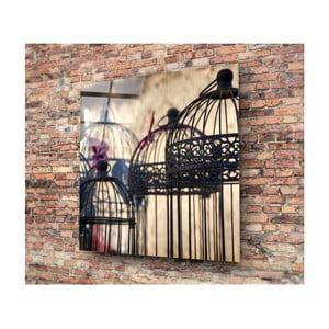 Skleněný obraz 3D Art Cages, 50x50cm