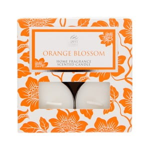 Čajové svíčky Spring Couture 8 ks, aroma pomeranč