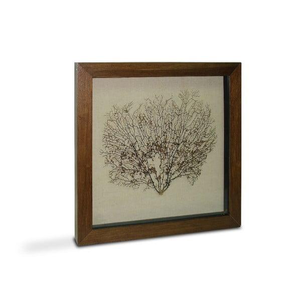 Obrázek Tree Diana, 60x60 cm