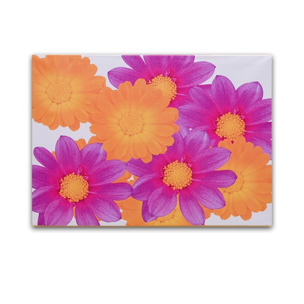Dřevěný obraz Flowers Composition, 50x36 cm