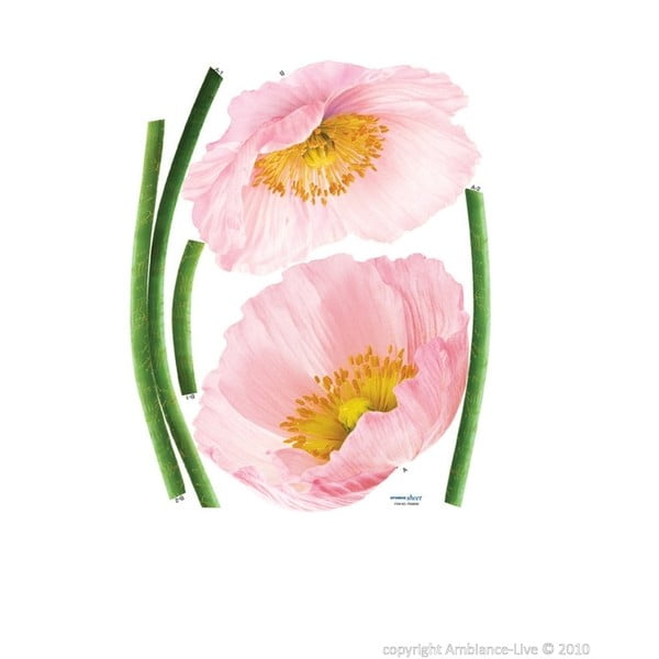 Samolepka Pink Poppy Flowers