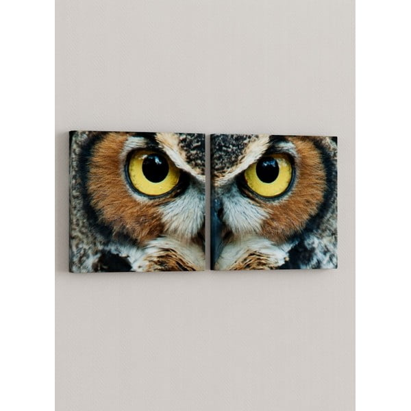 Sada 2 obrazů Oči soví