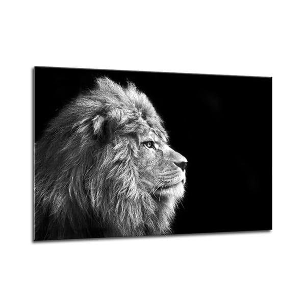Tablou Styler Glasspik Canvas Animals Lion, 70 x 100 cm