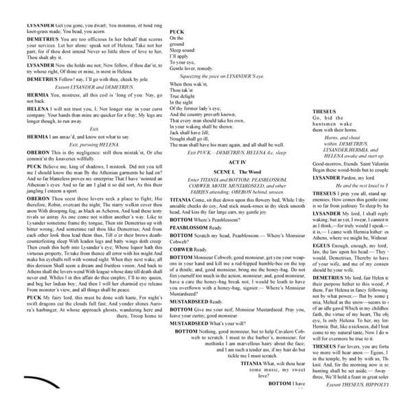 Knižní plakát Sen noci svatojánské, 50x70 cm