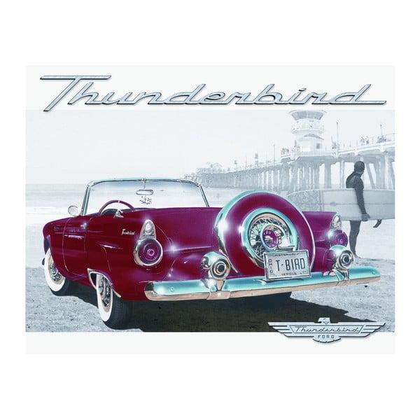 Plechová cedule Thunderbird, 30x40 cm