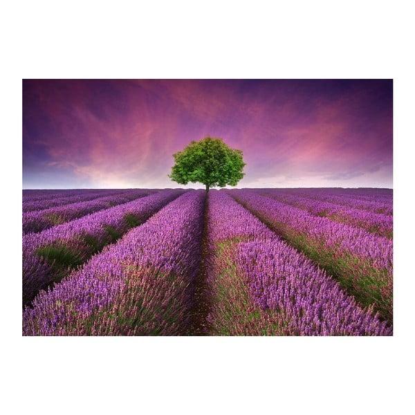Vinylový předložka Lavender Field, 52x75 cm