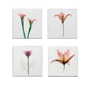 Set 4 dřevěných obrazů Flowers, 40x40 cm