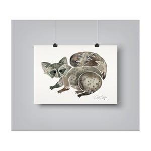 Plakát Americanflat Raccoon, 30x42cm