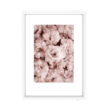 Tablou Piacenza Art Roses In Rosé, 30 x 20 cm imagine