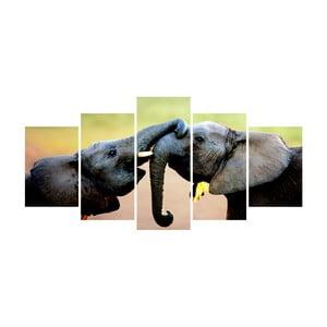 Vícedílný obraz La Maison Des Couleurs Elephants