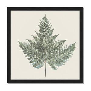 Obraz v rámu Liv Corday Scandi Fern, 40x40cm