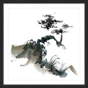 Obraz na plátně Marmont Hill Bonsai Habitat, 41 x 41 cm