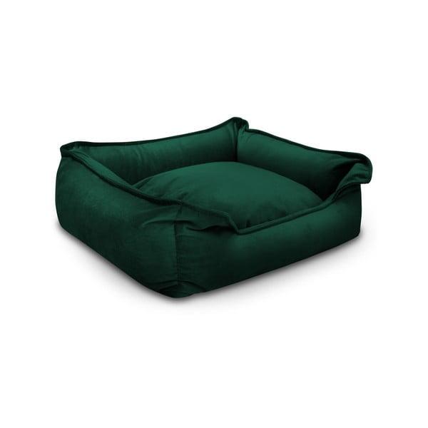 Pat pentru câine Marendog Nebula Premium, verde