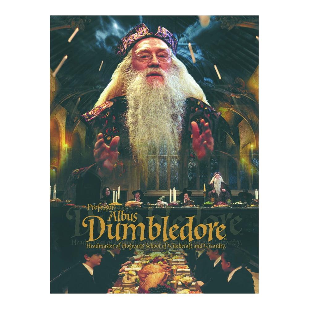 Obraz Pyramid International Harry Potter Dumbledore, 30 x 40 cm