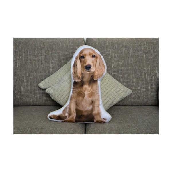 Polštářek Adorable Cushions Zlatý kokršpaněl