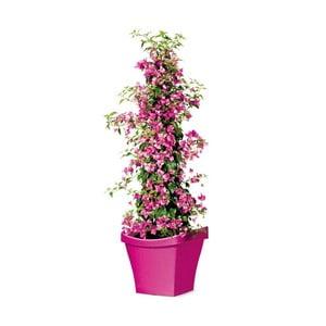Venkovní květináč Living 50 cm, růžový