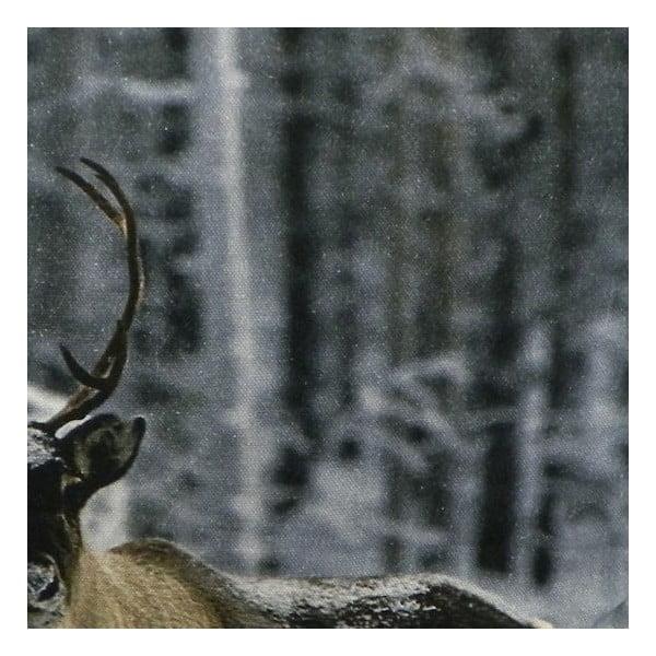 Polštář Sepia Reindeer Nature 50x50 cm