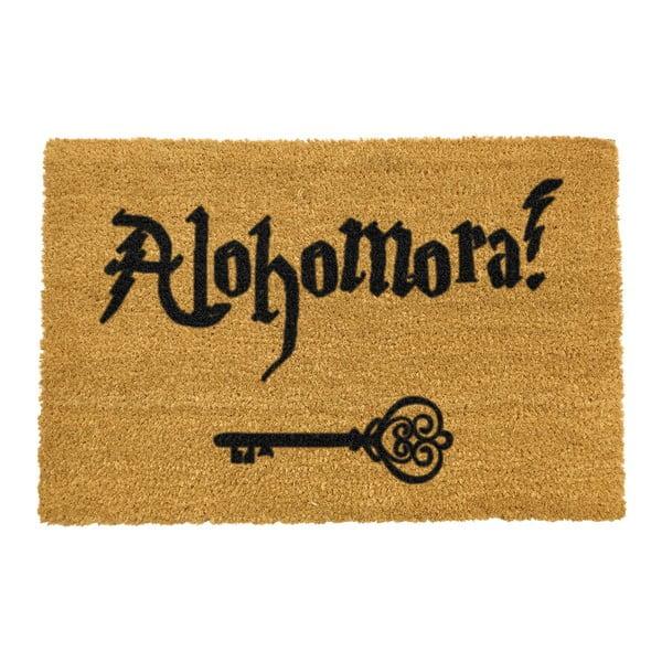 Alohomora természetes kókuszrost lábtörlő, 40 x 60 cm - Artsy Doormats