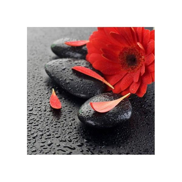 Obraz na skle Červený květ, 50x50 cm