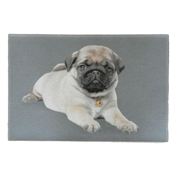 Předložka Mars&More Pug Pup, 75x50 cm