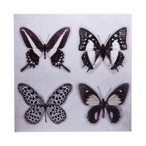 Obraz Ewax Black Butterflies, 60 x 60 cm