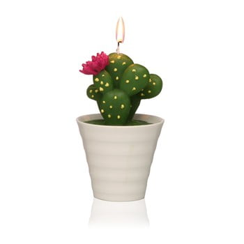 Lumânare decorativă în formă de cactus Versa Cactus Paol de la Versa