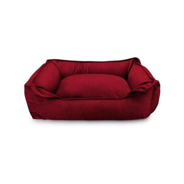 Nebula Premium piros kutyaágy - Marendog